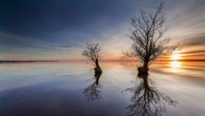 Trip idea: Lough Neagh